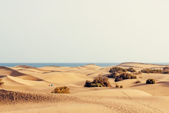 Les dunes de Maspalomas, Grande Canarie