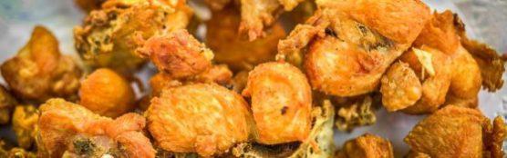 que-manger-à-cadix-poulet-muchosol