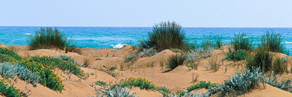 Casello-41-meilleures-plages-nudistes-de-Sicile