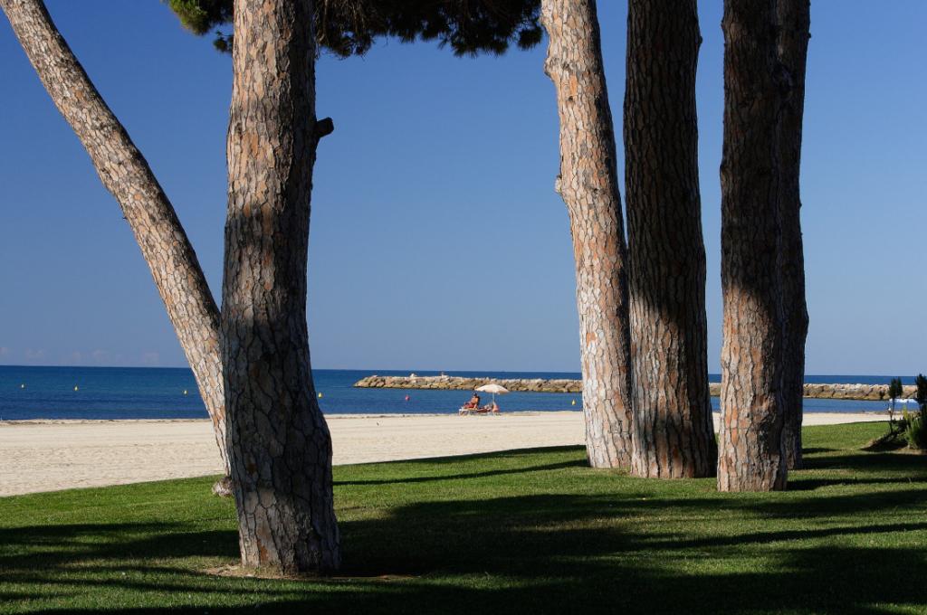 Les-plus-belles-plages-de-denia